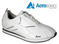 Aero Champion Lawn Bowling Trainer